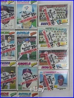 1977 Topps Baseball Cello Box 24 Sealed Packs Ryan/Seaver, All Pictured NEW