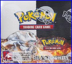 Pokemon Black & White Base Set sealed unopened booster box 36 packs of 10 cards